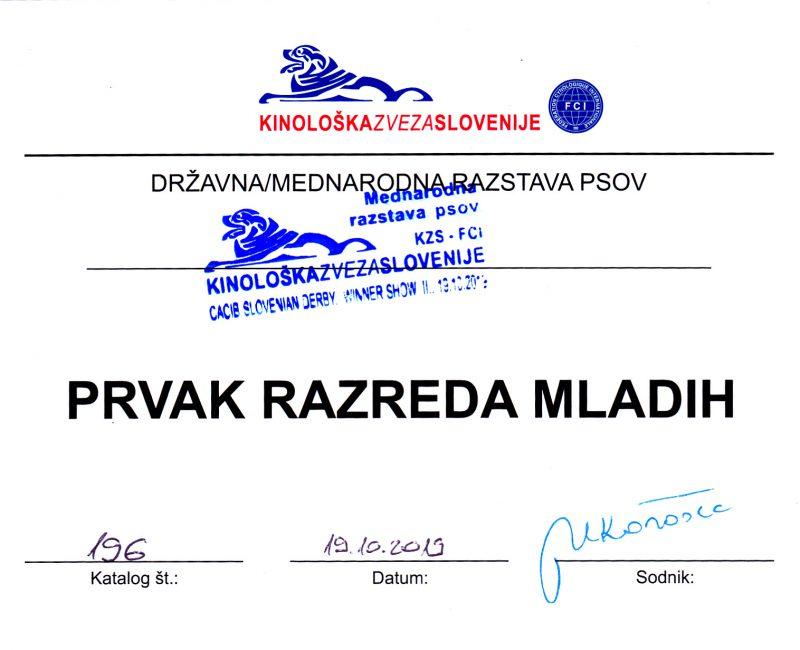 Ausstellung am 19.10.2019 Celje 2._0001